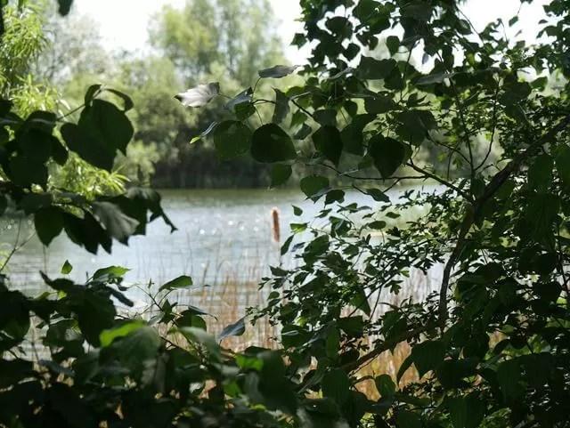 lakes at stanwick lakes