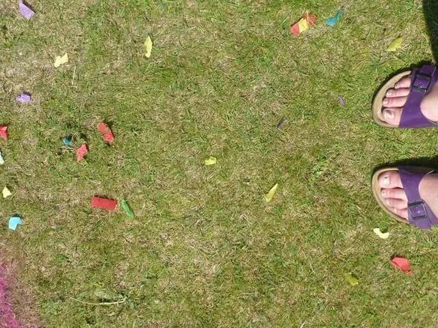 sunny confetti days