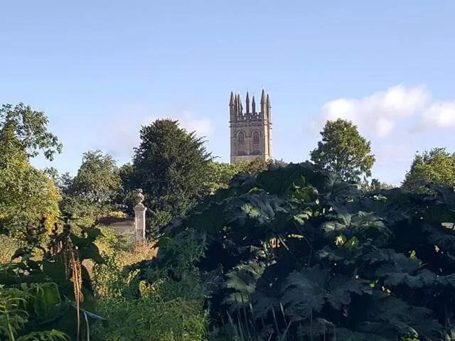 view from botanic gardens