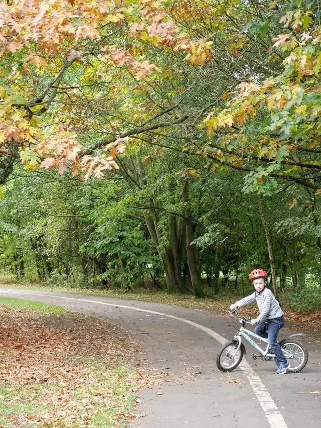 cycling in spiceball park