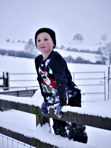 climbing the snowy fence