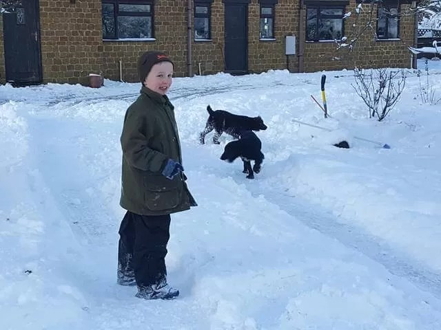 out in the snow with puppies