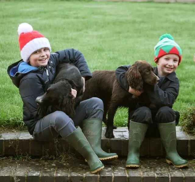 My Sunday Photo - festive hats cousins and dogs