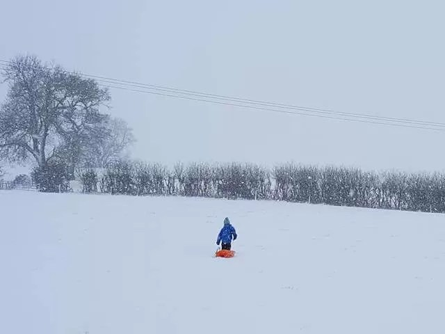 walking up the sledging hill
