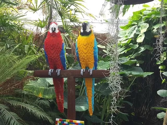 2 lego parrots at marwell