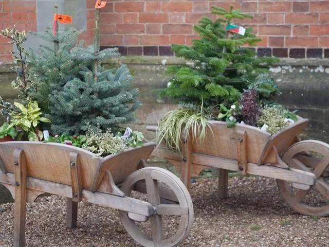 Charlecote park wooden wheelbarrows