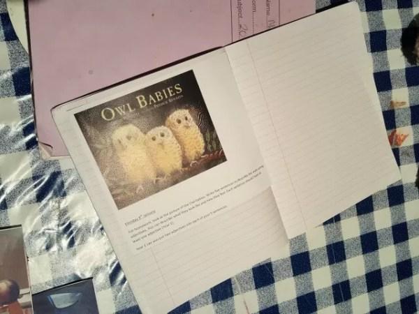 owl babies homework