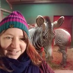 My Sunday Photo / Project 52 2018 week 7 – Zebra fun