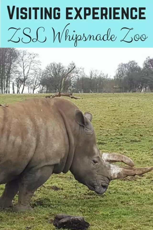 whipsnade visit