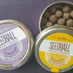 Attracting butterflies to the garden with Prezzybox seedballs