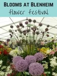 blenheim flower festival