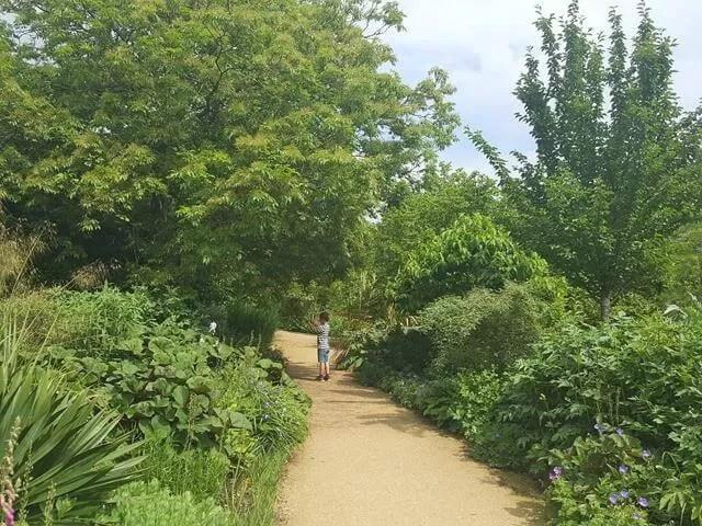 dyrham park garden walk