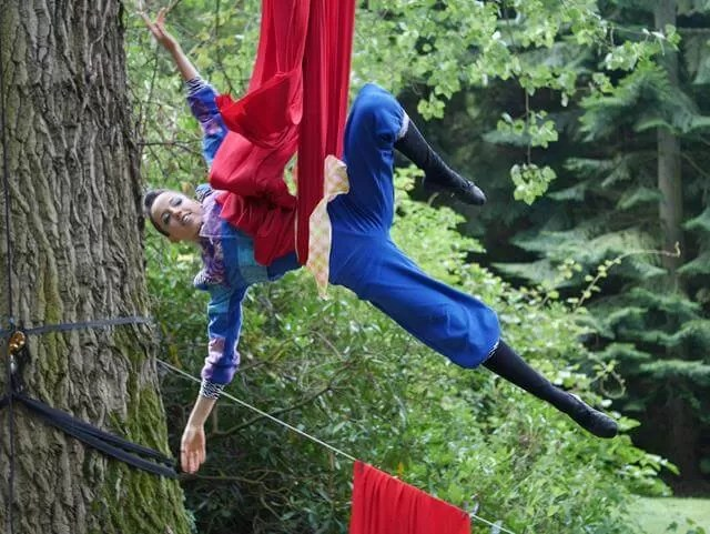 aerial silks pose