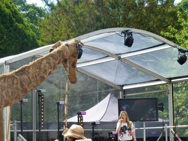 puppetry giraffe