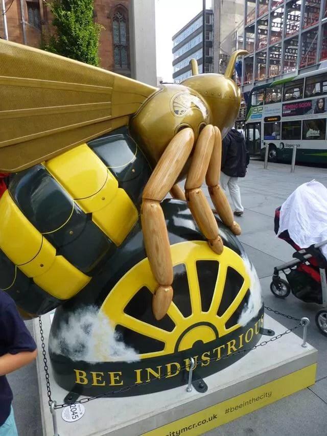 rocket, the steam punk bee