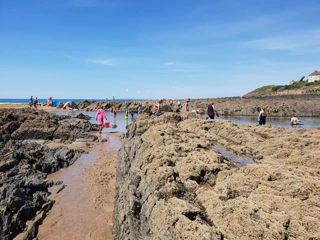 rockpooling at croyde
