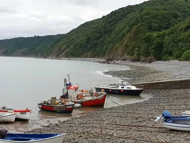 boats at clovelly