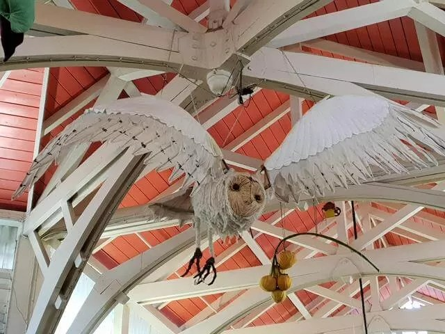 covered market owl