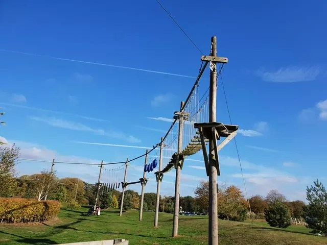 jungle top high wire course