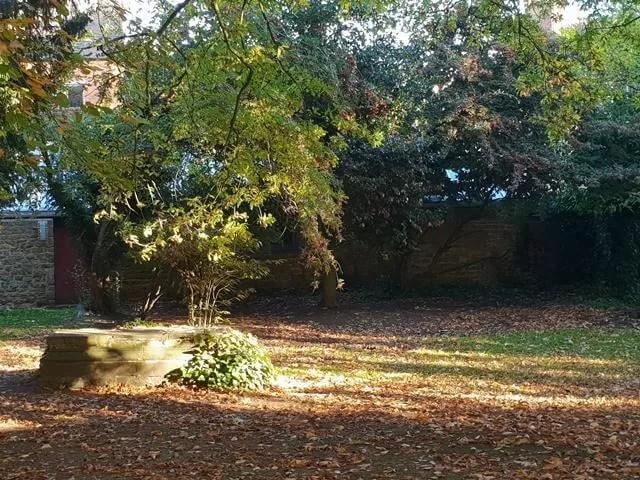 churchyard in sunlight
