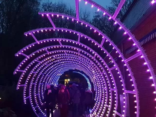 purple tunnel of light at waddesdon