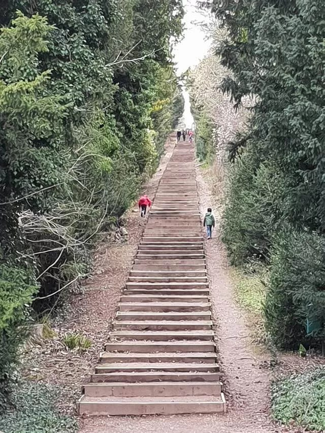 long wooden steps uphill at cliveden