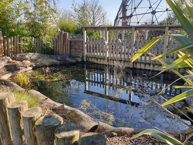 reflected bridge over pond