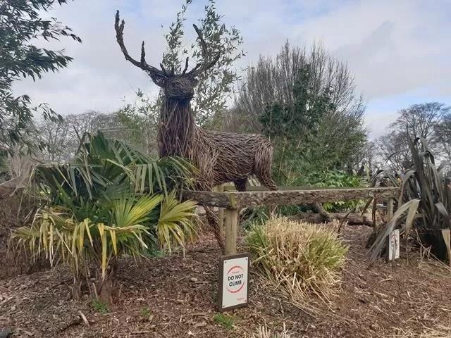 wooden deer model
