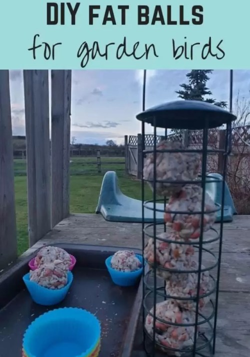 make DIY bird fat balls - Bubbablue and me