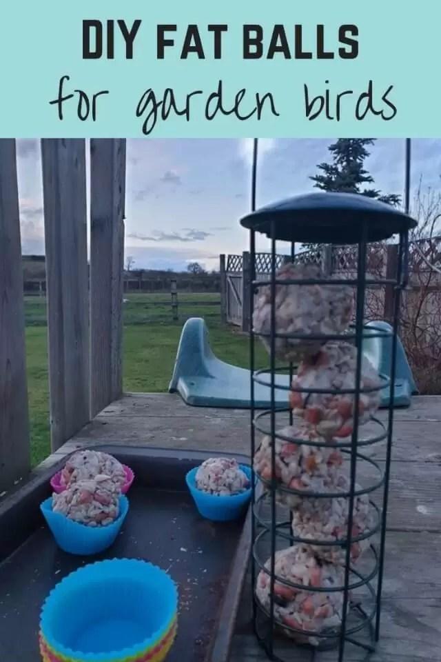 make DIY bird fat balls - Bubbablue and me