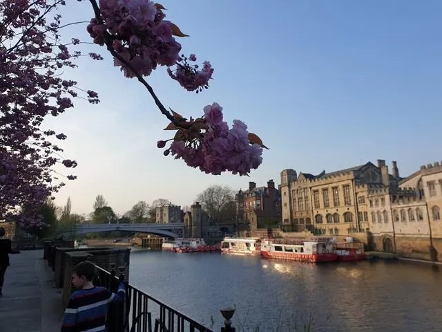 overlookingthe river ouse