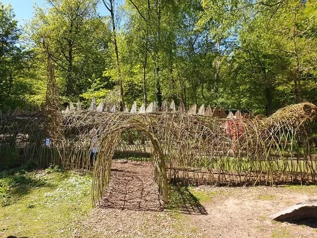 willow dragon tunnel