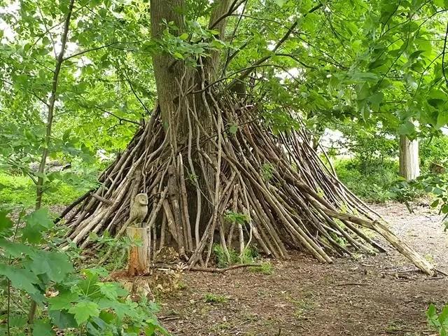 den branches