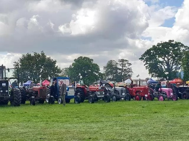 vintage tractors all lined up
