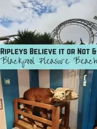 blackpool pleasure beach and ripleys