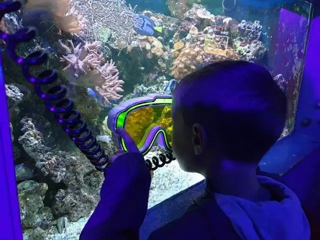 looking through colour goggles at sealife centre