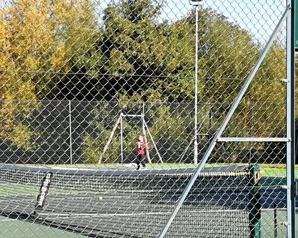 Project 52 2019 week 37 – tennis nets