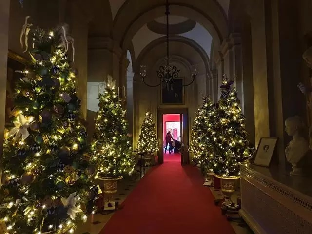 indoor corridt wiht lots of christmas trees