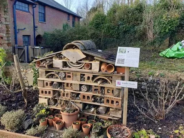 bug hotel at hughenden gardens