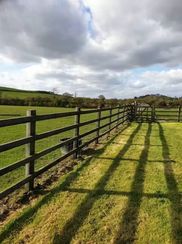 fence shadow stripes on lawn
