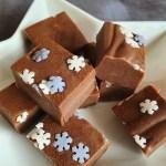 close up of gingerbread fudge