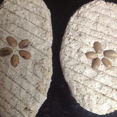 chleb z zoledzi dobrej wrozki Marii Bucardi
