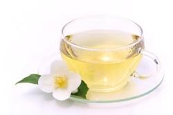 Jasmintee - Jasmine tea 07