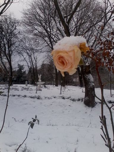 kraina_magdaleny1112