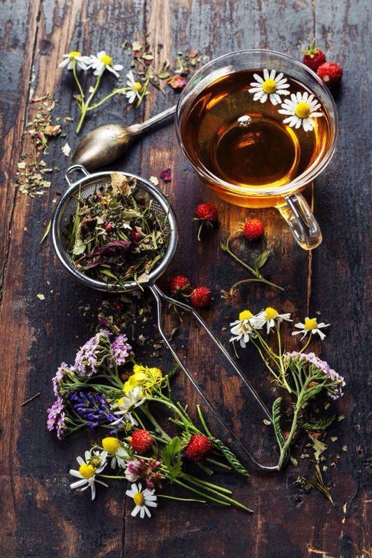 herbata z maria bucardi.jpg