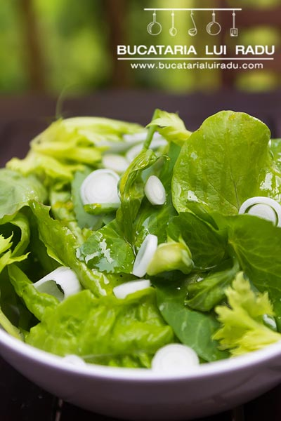 salata cu ceapa verde pentru friptura de iepure la cratita