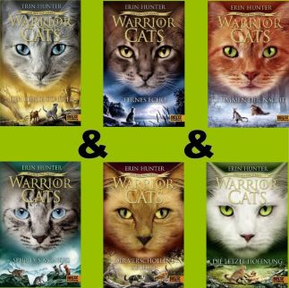 warrior cats staffel 4