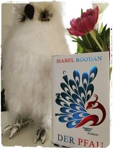 """Der Büchereule gefällt's - das wunderschöne Cover von Isabel Bogdans """"Der Pfau"""""""