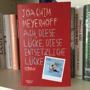 Ach, diese Lücke, diese entsetzliche Lücke - Joachim Meyerhoff