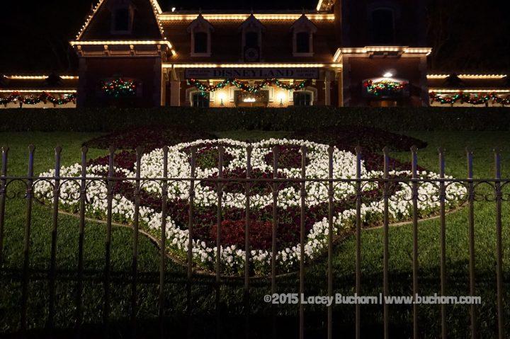 Disneyland Day 1